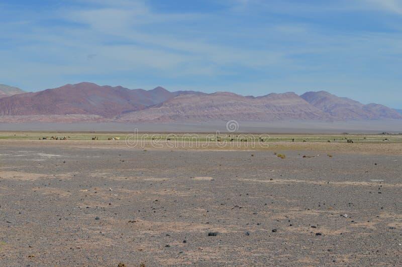 Antofagasta de la Sierra imagenes de archivo