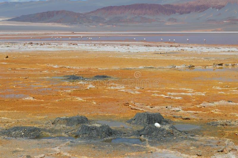 Antofagasta De Los angeles Sierra obraz royalty free