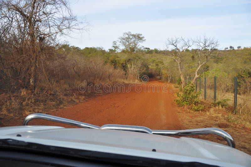 Antreiben eines 4x4 in Afrika lizenzfreies stockfoto