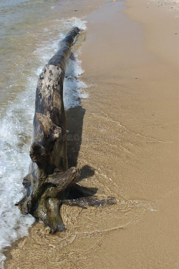 Antrieb-Holz und Welle stockfotografie