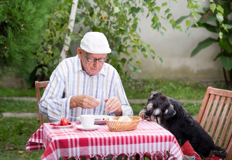 Antropófago velho no jardim com cão imagens de stock