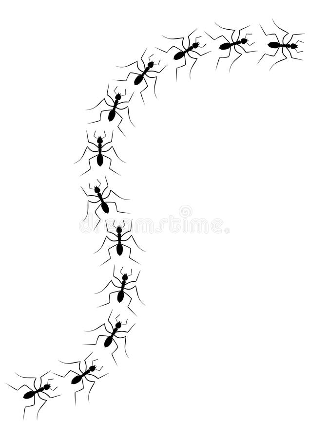 Download Ants stock vector. Illustration of group, colony, wave - 19769039