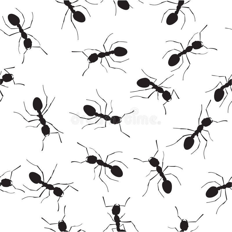 Download Ants 2 stock vector. Image of white, termite, antenna - 15113908