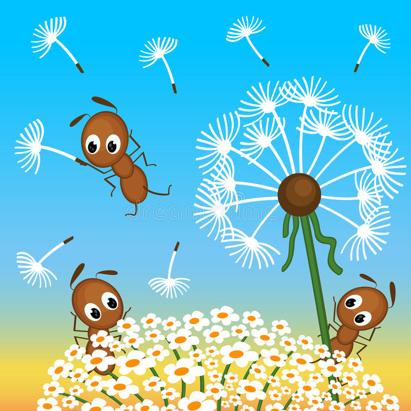 Free Ants And Dandelion Stock Photos - 34815193