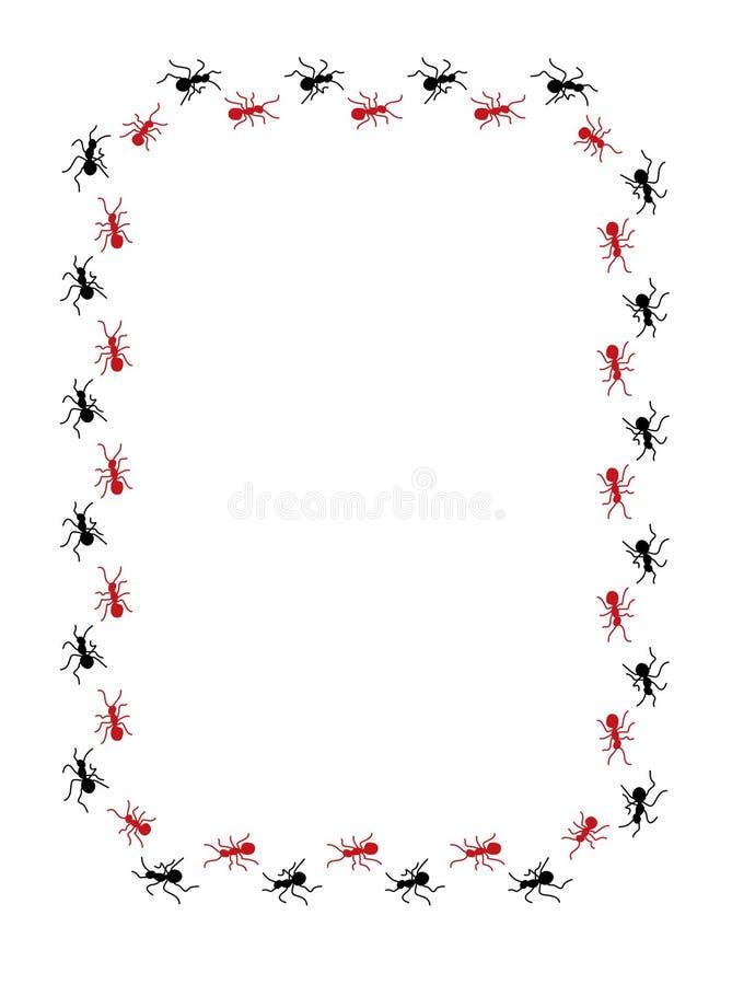 Ants border
