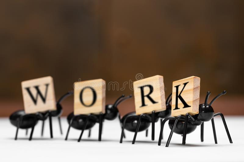 Ants carry letters that make up the word work royalty free stock images