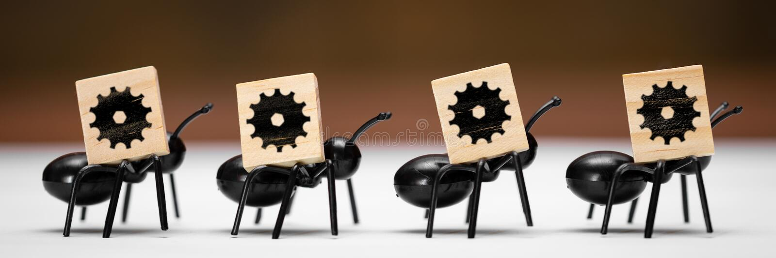 Ants carry wooden blocks with the symbol of a cogwheel. Four ants carry wooden blocks with the symbol of a cogwheel royalty free stock photos