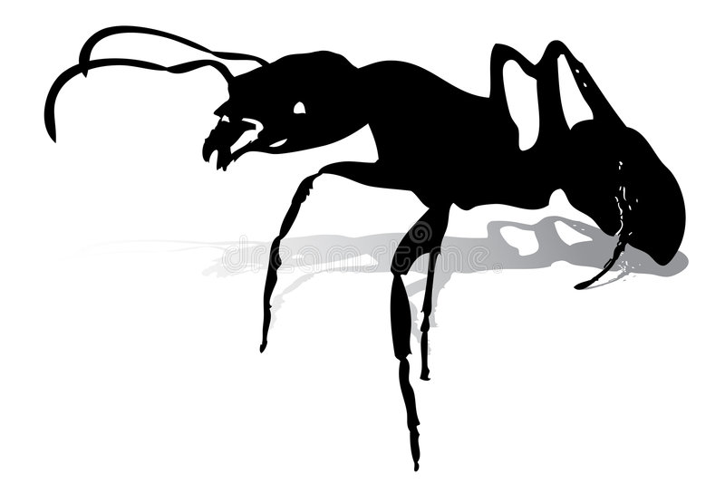 Ants Silhouette vector illustration
