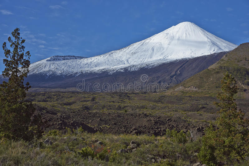 Antuco Volcano in Laguna de Laja National Park, Chile stock photo