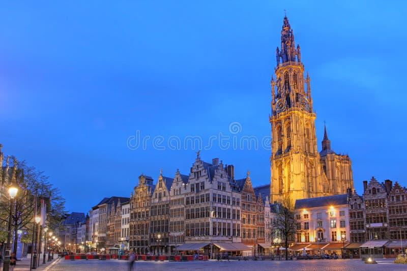 antwerp Belgien royaltyfri fotografi