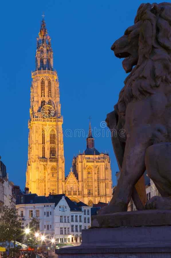 Antwerp - cathedral of Our Lady with the lion statue and Suikerrui street in evening stock photography