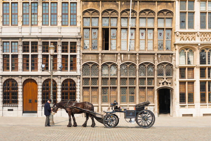 Antwerp Kierowca Koński Zapluskwiony Grote Markt Guildhouse zdjęcia royalty free