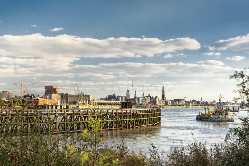 Antwerp linia horyzontu obraz royalty free