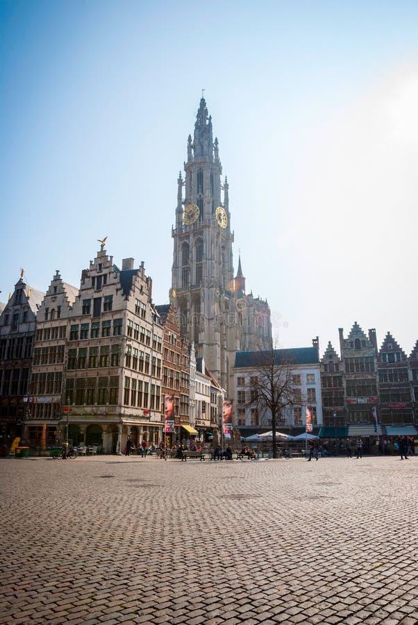 Antwerp stary miasteczko z katedrą, Belgia fotografia stock