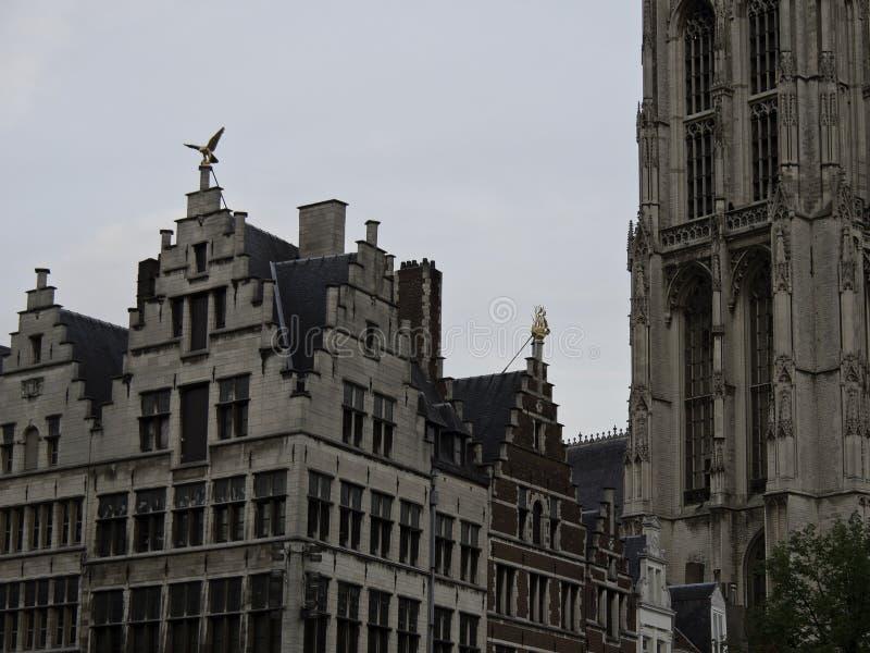 Download Antwerpen stock afbeelding. Afbeelding bestaande uit antwerpen - 54078681