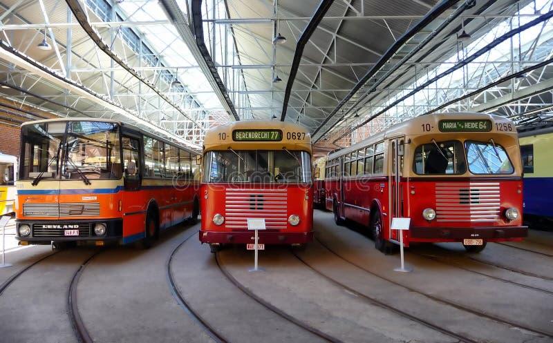 ANTWERPEN, BELGIEN - 29. JUNI 2019: Weinlesebusse benutzt in Belgien, bis die achtziger Jahre am flämischen Tram-Museum angezeigt stockbilder