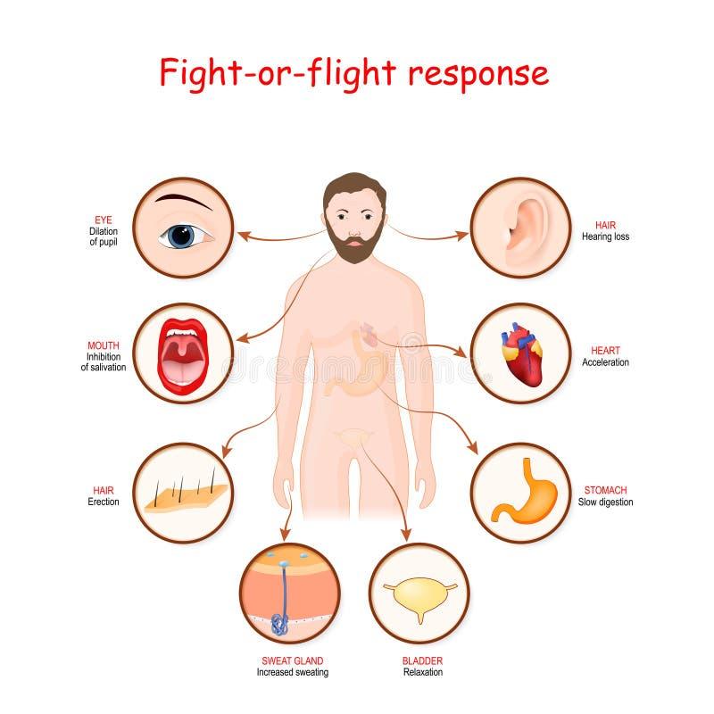 Antwort auf den Flug oder den Flug lizenzfreie abbildung