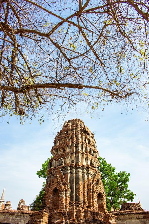 Antyczna świątynia Tajlandia, Watmahathat, Ayutthaya zdjęcie stock