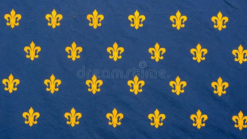 Antyczna flaga Francja królestwo fotografia royalty free