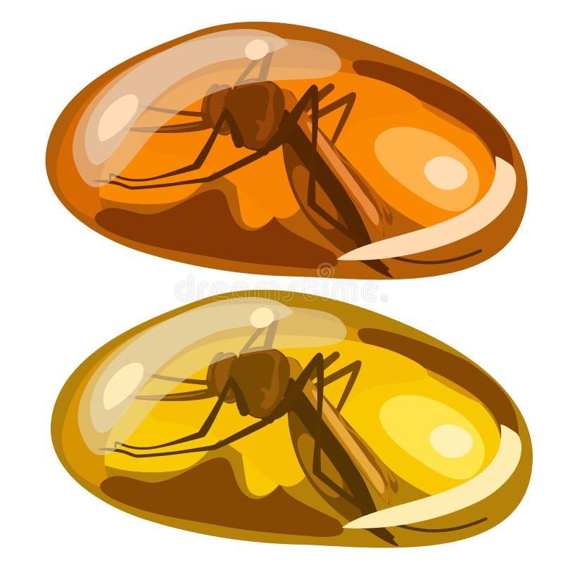 Antyczna insekt komarnica marznąca w bursztynie, rzadki kamień ilustracji