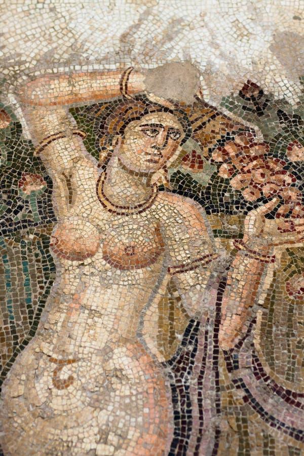 antyczna mozaika zdjęcia royalty free