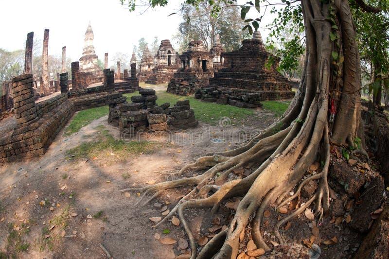 Antyczna pagoda w Wacie Jed Yod w Si Satchanalai dziejowym parku. zdjęcie stock