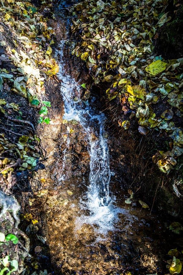 Antyczna siklawa w lesie obraz royalty free