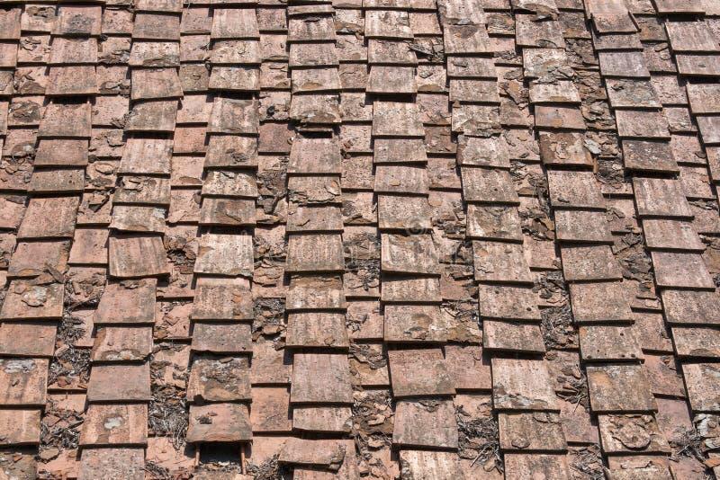 Antyczna terakotowa dachowa płytka, Italy zdjęcie royalty free