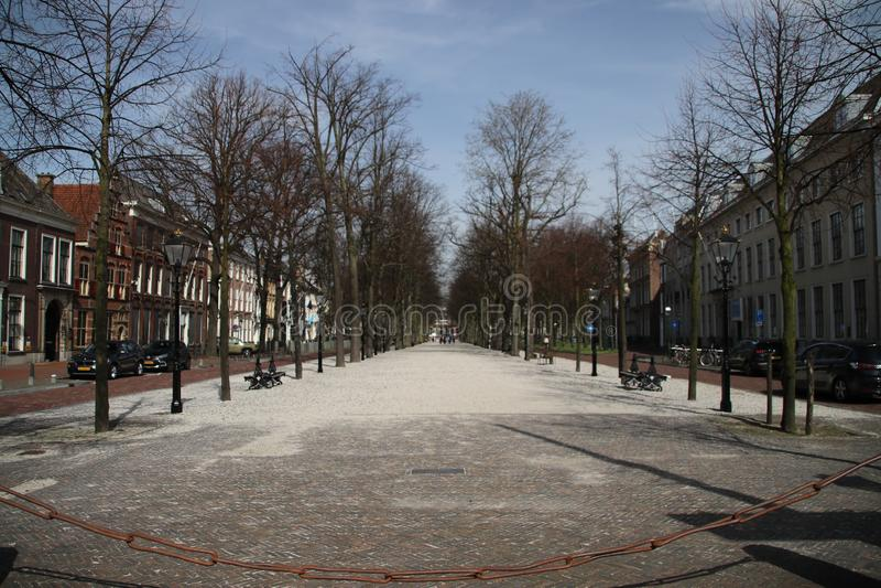 Antyczna ulica w mieście melina Haag wymieniał lange voorhout w holandiach fotografia royalty free
