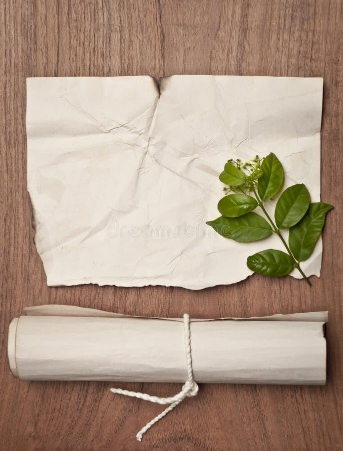 Antyczna zmięta papierowa ślimacznica na drewno stole z zielonym liściem dla tła zdjęcia stock