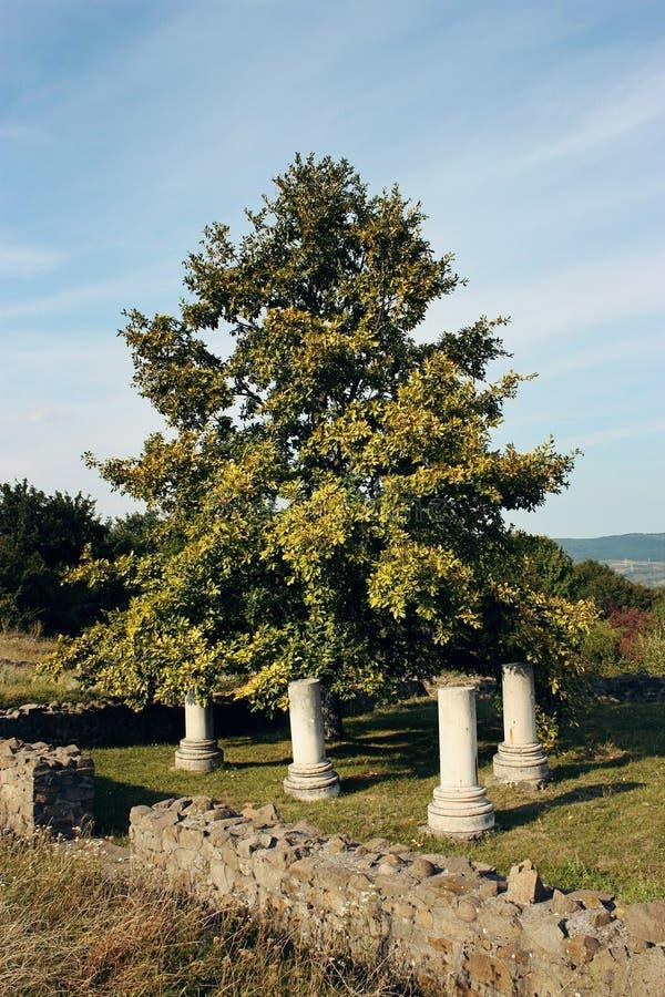 Antyczne Romańskie świątyni ruiny obrazy stock