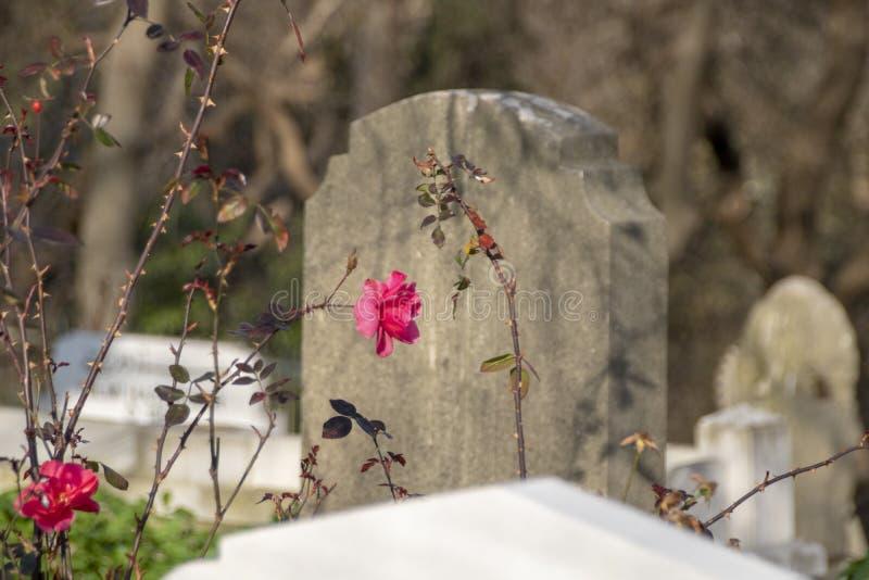 Antycznego grobowa kamień Osmański okres, Turcja zdjęcia stock