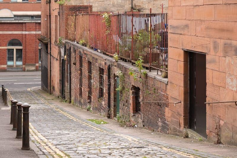 Antyczni zaniedbani budynki majątkowi w Glasgow z dzikimi kwiatami i świrzepami obrazy royalty free