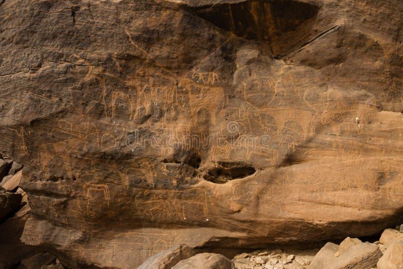Antyczni zwierzęcy petroglify przy Sabu Sudan zdjęcie royalty free
