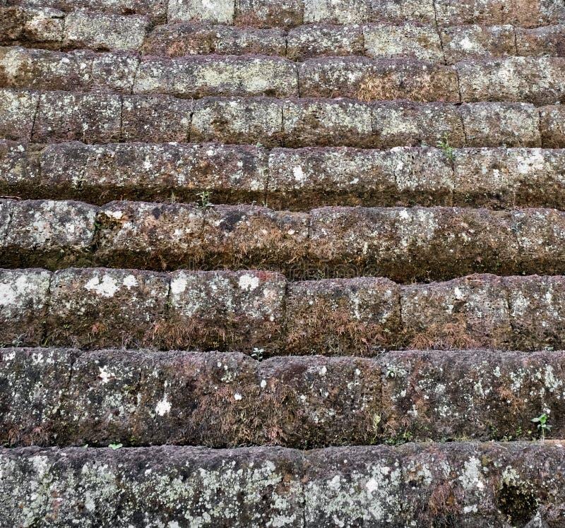Antyczny, budujący kamienni bloki, kroki Kamieniarstwo, przerastający z mech T?o fotografia stock