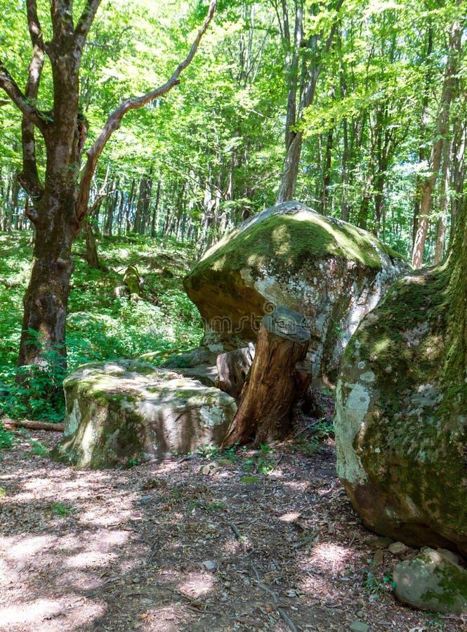 Antyczny megalityczny dolmen, Tuapse, Rosja fotografia royalty free