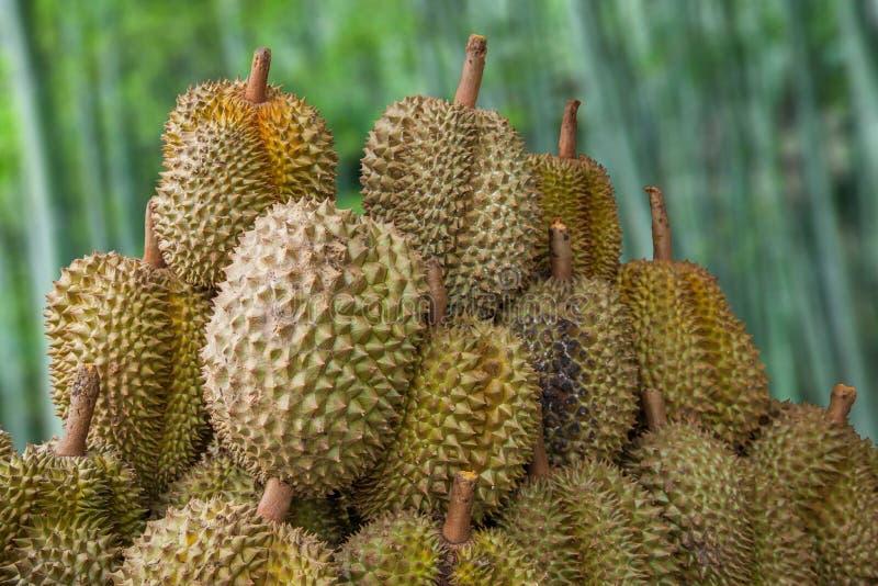 Antyczny miasto Chiang Mai, Tajlandia durian owocowy rynek --- zdjęcie stock