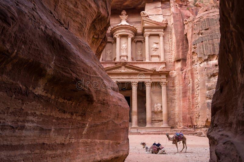 Antyczny nabataean świątynny Al Khazneh skarbiec lokalizować przy Różanym miastem - Petra, Jordania Dwa wielbłąda przed wejściem  obrazy stock