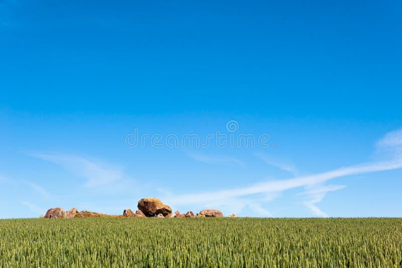 Antyczny megalityczny grobowiec na wyspie Langeland, Dani zdjęcie royalty free