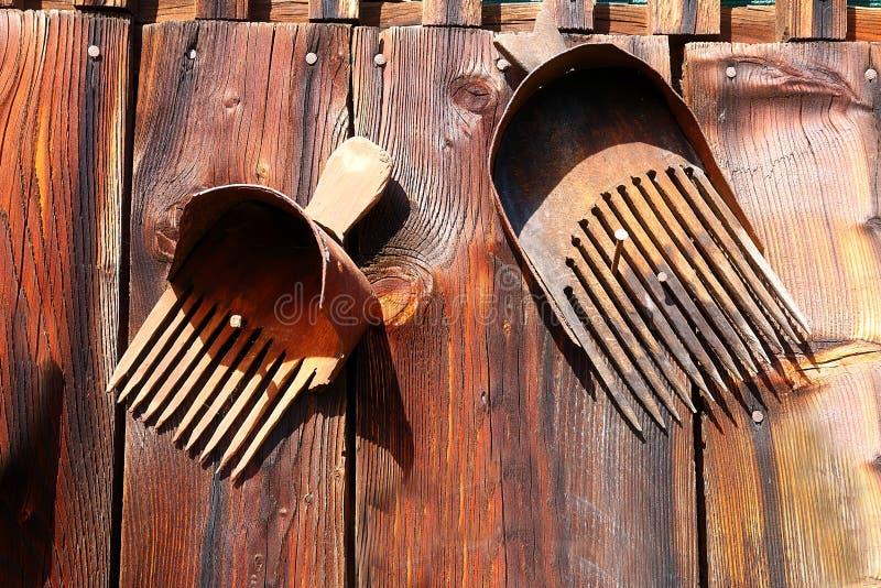 Antykwarski starego stylu przedmiota retro zbiorowisko na drewnianej ścianie nieociosany przełaz Świntuch w czarnych jagodach zdjęcie stock