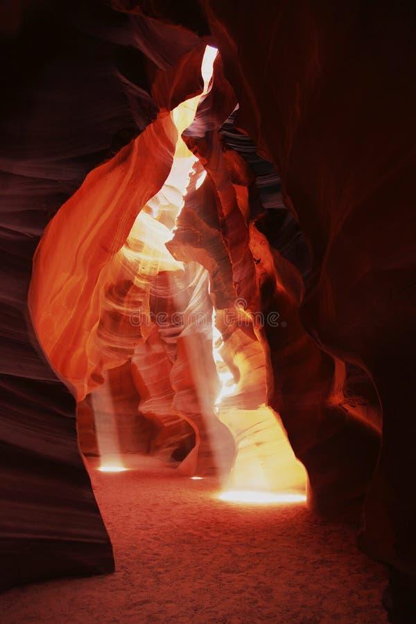 Download Antylopa jar zdjęcie stock. Obraz złożonej z strona, piasek - 22292630