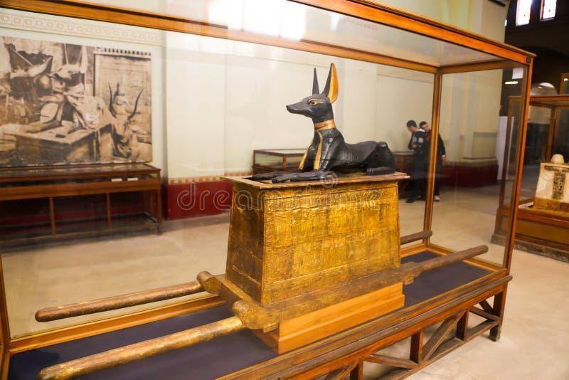 Anubis gudstaty av den spända Ankh Amonskatten - egyptiskt museum fotografering för bildbyråer
