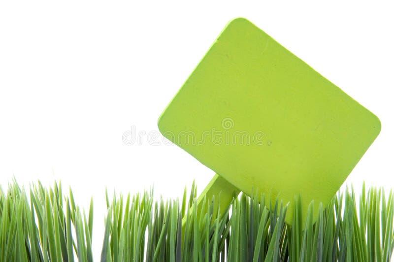 Anule verde assinam dentro a grama fresca foto de stock royalty free