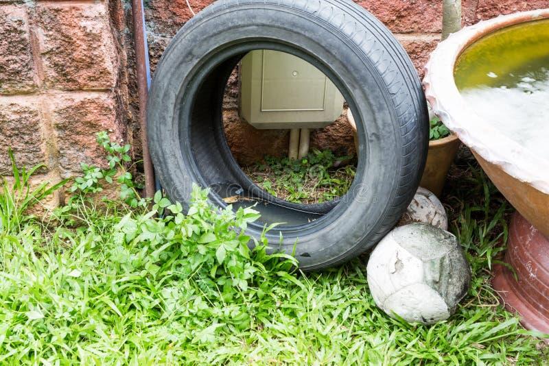 Använda däck lagrar potentiellt stangnerande vatten, och myggor föder upp royaltyfri foto