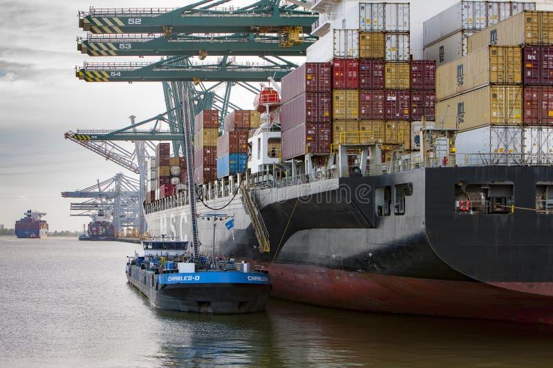 Anvers, Belgique - 10 juin - 2019 : Le port de Deurganckdock d'Anvers photo stock