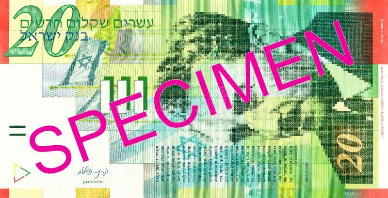 anverso novo israelita da cédula do shekel 20 fotos de stock royalty free