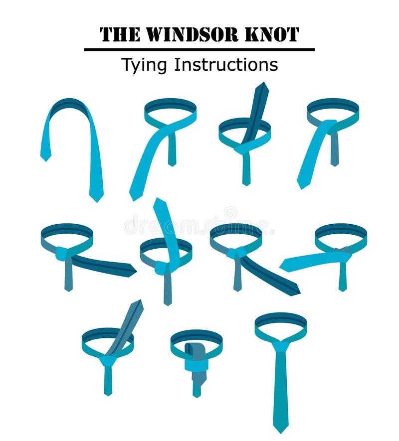 Anvisningarna för fnuren för windsorband som isoleras på vit bakgrund Handbok hur man binder en slips Plan illustration i vektor vektor illustrationer