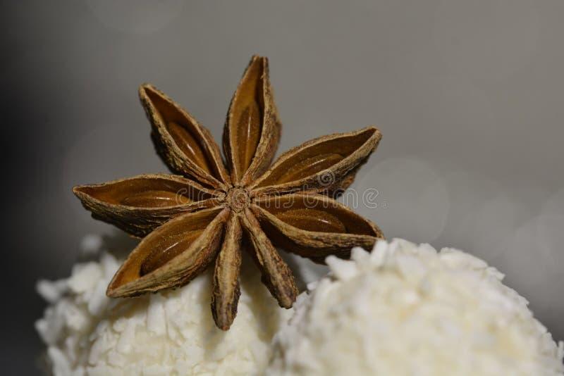Anyż gwiazda z białą czekoladą zdjęcia royalty free