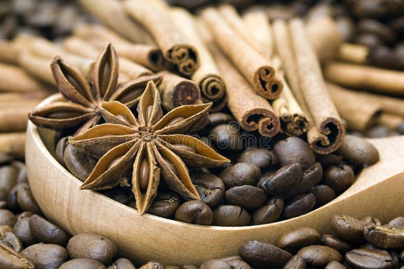 anyżowa fasoli cynamonu kawa obrazy stock