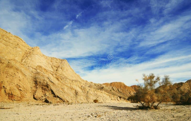 Anza Borrego Desert view stock photography